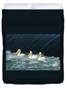 Three Pelicans Hanging Out  Duvet Cover