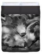 Three Piglets Sleeping Against Each Duvet Cover