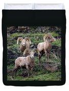 Three Rams Duvet Cover