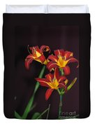 Three Red Daylilies Duvet Cover