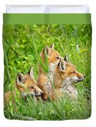 Three Red Fox Pups Duvet Cover
