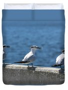 Three Turning Terns Duvet Cover