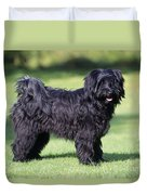 Tibetan Terrier Dog Standing Duvet Cover