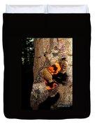 Tiger Moth Flight Duvet Cover