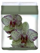 Tiger Orchid Duvet Cover