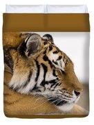 Tiger Sleeping Duvet Cover