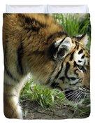 Tiger Stalking Duvet Cover