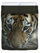 Tiger You Looking At Me Duvet Cover