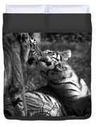 Tigers Kissing Duvet Cover