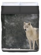 Timber Wolf Female North America Duvet Cover