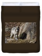 Timber Wolf In Pond Duvet Cover