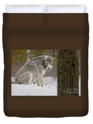 Timber Wolf In Snow Duvet Cover