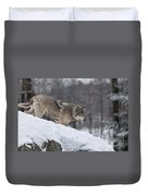 Timber Wolf On Hill Duvet Cover