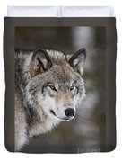 Timber Wolf Pictures 1067 Duvet Cover