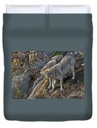 Timber Wolf Pictures 1094 Duvet Cover