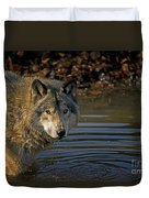 Timber Wolf Pictures 1103 Duvet Cover
