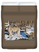 Timber Wolf Pictures 1175 Duvet Cover