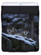 Timber Wolf Pictures 1233 Duvet Cover