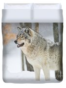 Timber Wolf Pictures 1302 Duvet Cover