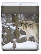 Timber Wolf Pictures 1306 Duvet Cover
