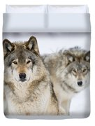 Timber Wolf Pictures 1312 Duvet Cover