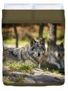 Timber Wolf Pictures 1363 Duvet Cover