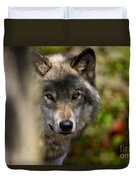 Timber Wolf Pictures 1365 Duvet Cover