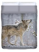 Timber Wolf Pictures 1401 Duvet Cover