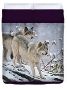 Timber Wolf Pictures 1417 Duvet Cover