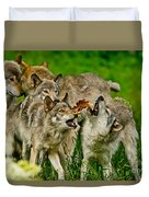 Timber Wolf Pictures 1593 Duvet Cover