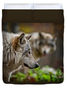 Timber Wolf Pictures 1693 Duvet Cover
