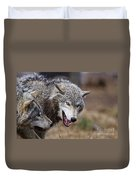 Timber Wolf Pictures 173 Duvet Cover