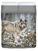 Timber Wolf Pictures 187 Duvet Cover