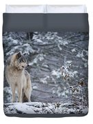 Timber Wolf Pictures 189 Duvet Cover