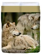 Timber Wolf Pictures 192 Duvet Cover