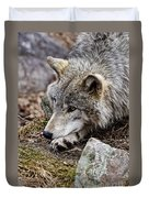 Timber Wolf Pictures 205 Duvet Cover