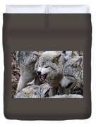 Timber Wolf Pictures 210 Duvet Cover