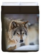 Timber Wolf Pictures 259 Duvet Cover