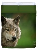 Timber Wolf Pictures 261 Duvet Cover