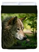 Timber Wolf Pictures 263 Duvet Cover