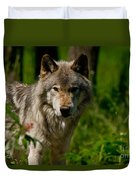 Timber Wolf Pictures 266 Duvet Cover