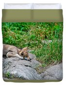 Timber Wolf Pictures 329 Duvet Cover