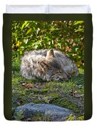 Timber Wolf Pictures 42 Duvet Cover