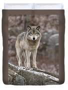 Timber Wolf Pictures 495 Duvet Cover