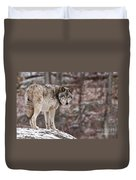 Timber Wolf Pictures 498 Duvet Cover