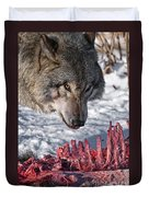 Timber Wolf Pictures 552 Duvet Cover