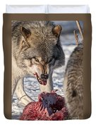 Timber Wolf Pictures 556 Duvet Cover