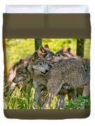 Timber Wolf Pictures 61 Duvet Cover