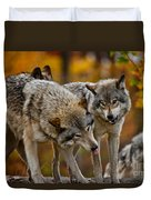 Timber Wolf Pictures 62 Duvet Cover