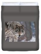 Timber Wolf Pictures 620 Duvet Cover